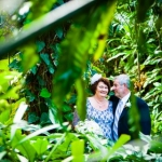 Linda and Clive married by Cairns Wedding Celebrant Janine Meakin